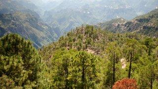 Tarahumara dans la région nord du mexique